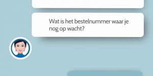 chatbot voorbeelden
